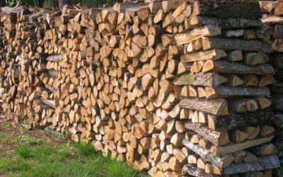Annulation de la vente des lots de bois